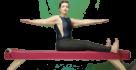 Carolina Alcantara - Pilates Controle 064